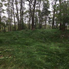 Ballyduff Trails